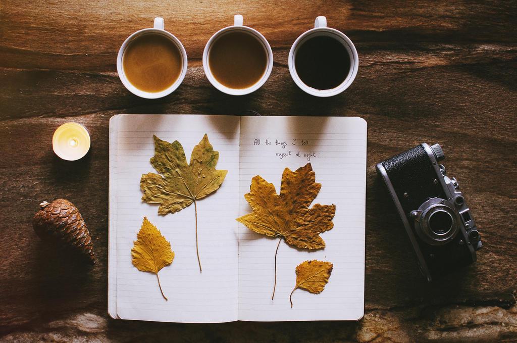 autumn feeling. by ilmari-nen