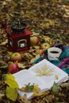 autumn vibes 5.
