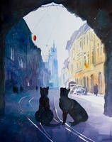 Cats from Old Cracow by sanderus