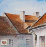 Roofs from Tykocin I