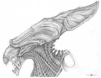 the Xenomorph Alien Queen by ChrisOzFulton