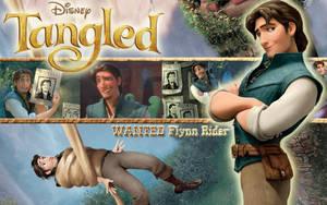 Tangled Wall 3 Flynn Rider by Yamakara