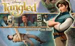 Tangled Wall 3 Flynn Rider