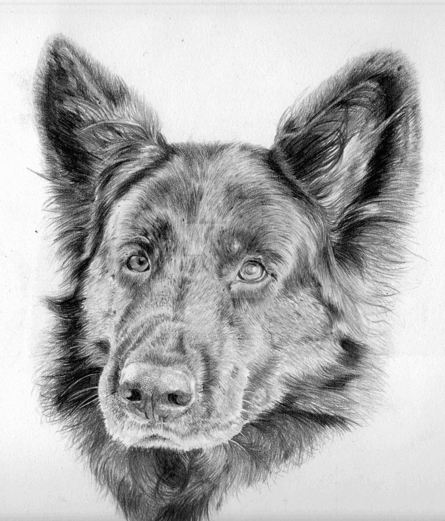 Commission - Darel's Black German Shepard by Fullmetal-puppy
