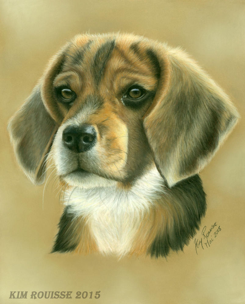 Dog by Kim1486
