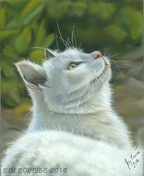 White Cat by Kim1486