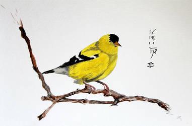 Goldfinch by Boio8010