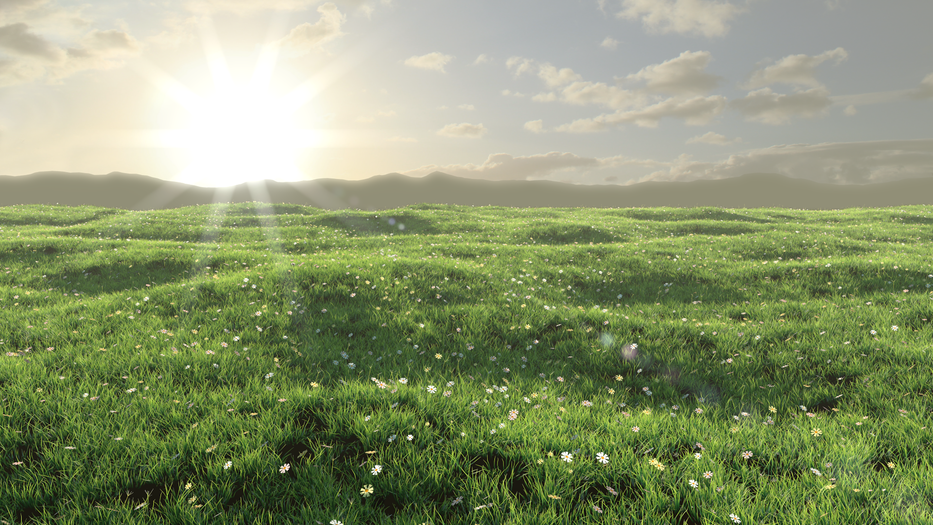 Flowers on the meadow by flyingrae on deviantart for The meado