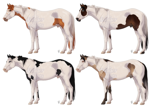 Medicine Hat Horse Adopts - 3/4 OPEN