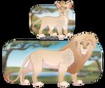 Lion Adopt - CLOSED