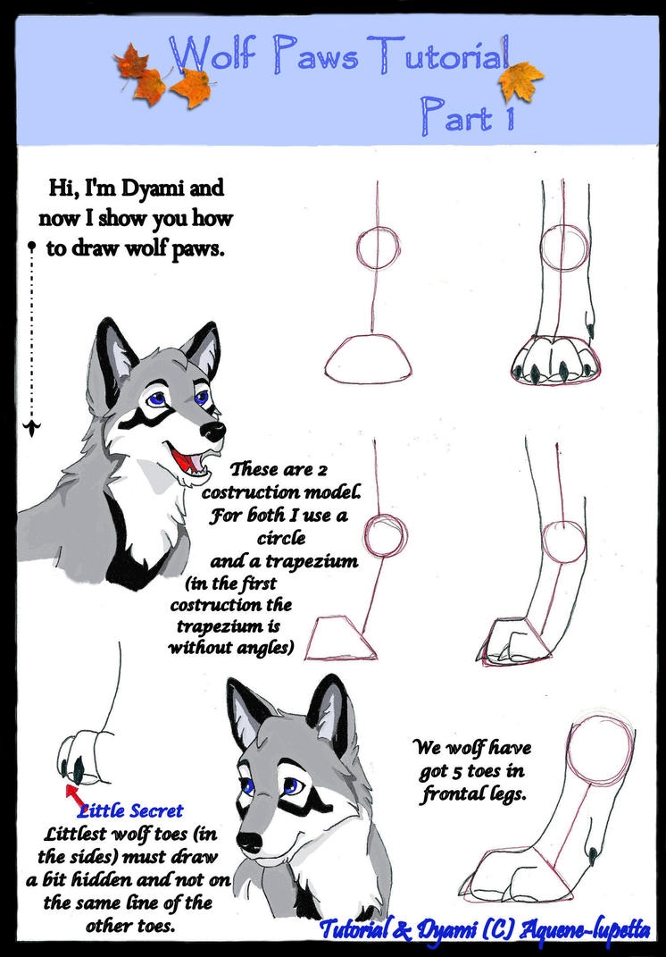 Wolf Paws Tutorial Part 1 By Aquenelupetta How I Draw