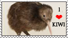 Kiwi (animal) stamp by Aquene-lupetta