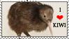 Kiwi (animal) stamp by Aquene-lupetta