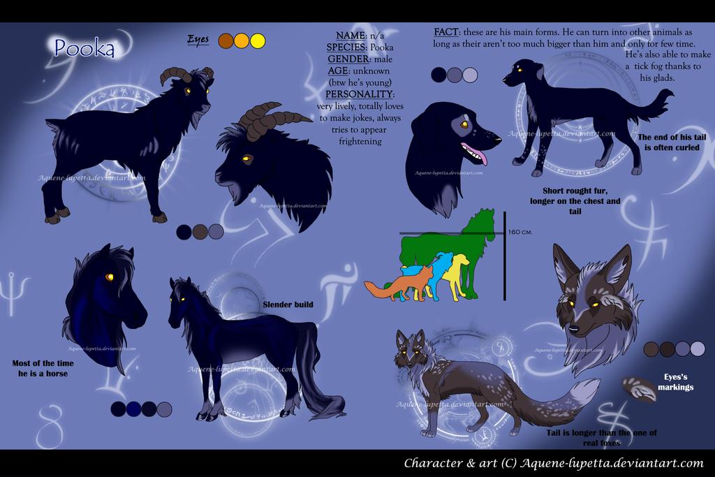 Pooka_Character sheet by Aquene-lupetta