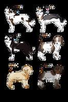 Dog mixed batch_CLOSED by Aquene-lupetta