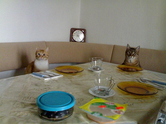 breakfast by gokcegokcen