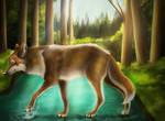 Wolf Walking on Water