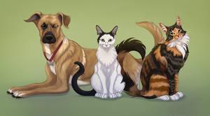 Watson, Cal and Jules