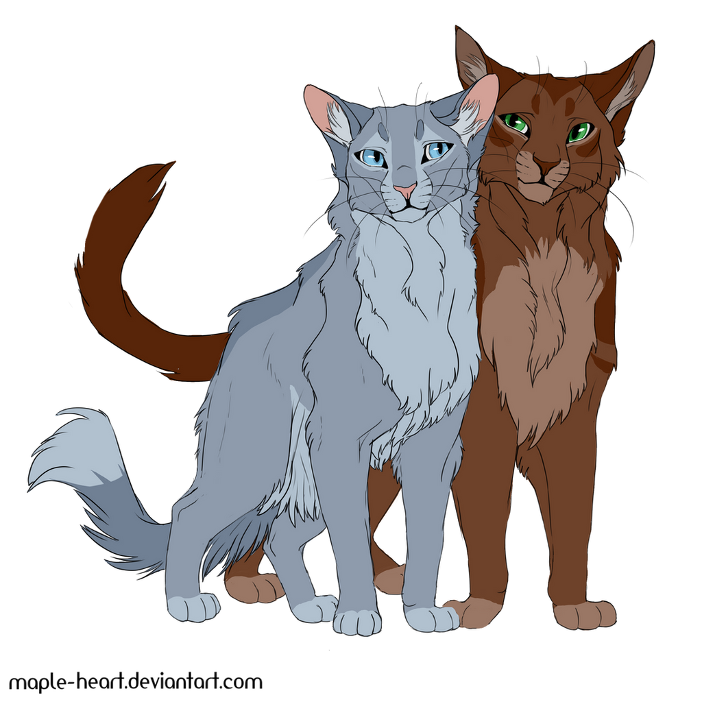 bluefur and oakheart by mapleheart on deviantart
