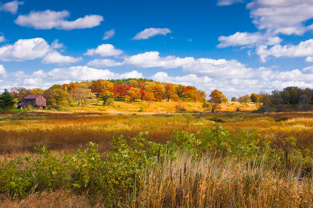 Northwest Illinois Fall by teknoman427