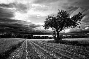 Alone by jendrynDV