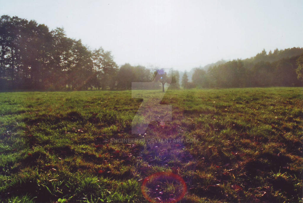 Odenwald Autumn Meadow by engineerJR