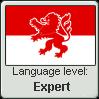 Hessian Language Expert by engineerJR