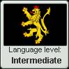 Electoral Palatinate Language Level Intermediate by engineerJR