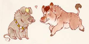 boar buds