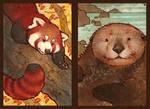 endangered ark - second set