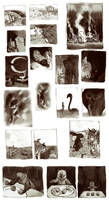 misc thumbnails by luve