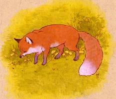 skbk fox by luve