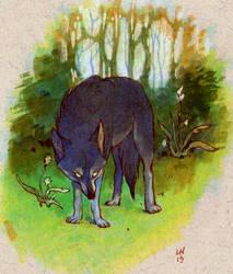 skbk wolf by luve