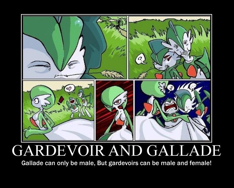 Guy fucks hot gardevoir comic, pokemon porn virgin