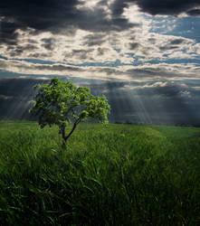 Darkness surrounds you by Pamba