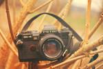 Old Petri camera