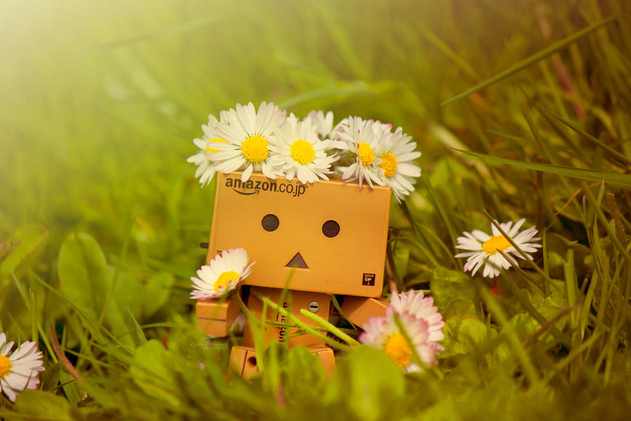 danbo found some flowers by pamba on deviantart, Beautiful flower