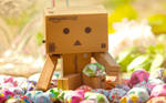 Danbo makes a wish
