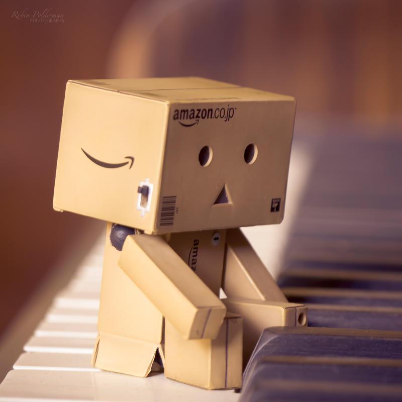 Playing the piano by Pamba