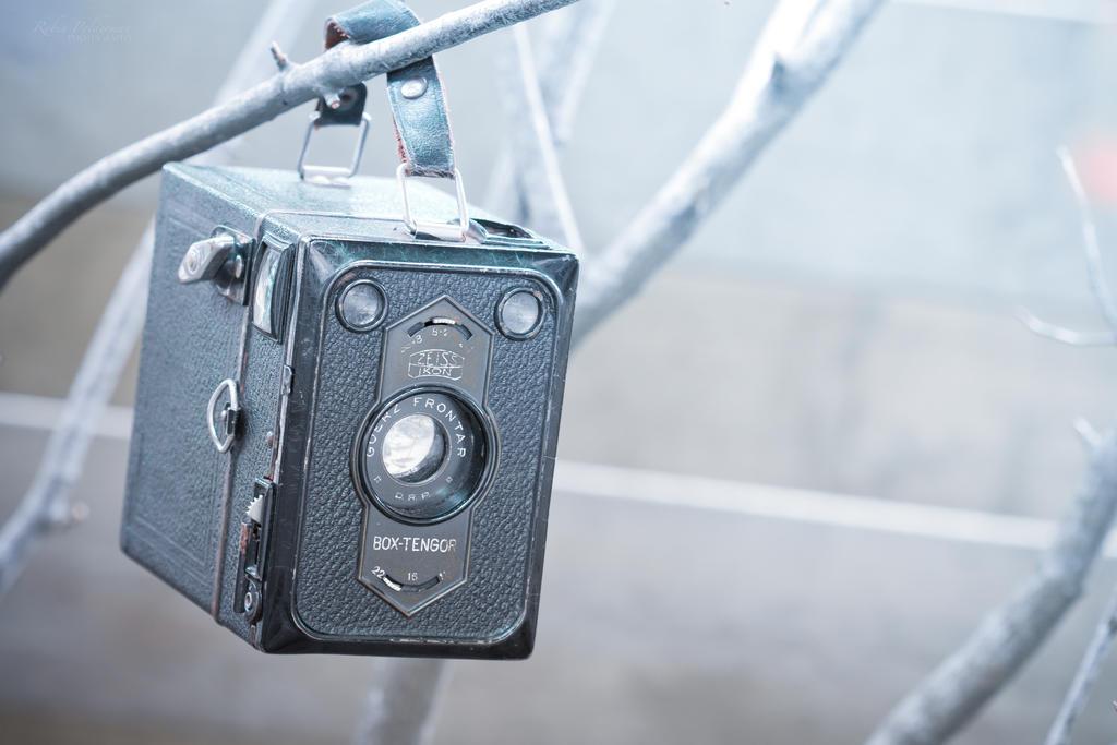 Winter Camera by Pamba