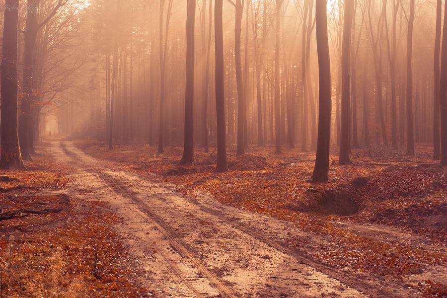 An autumn story by Pamba