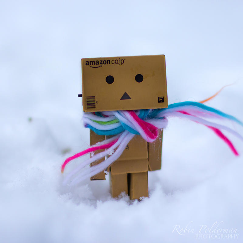 Something new for Danbo by Pamba