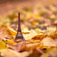 Paris in autumn by Pamba
