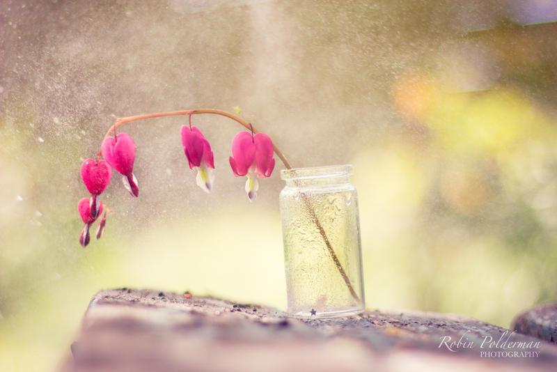 Sweet Rain by Pamba