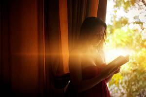 The reader by AndreeaRad