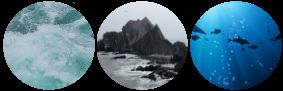Ocean Aesthetic Circle Dividers [F2U] by ScenarioDreamer