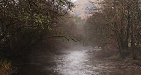 Misty River by MaresaSinclair
