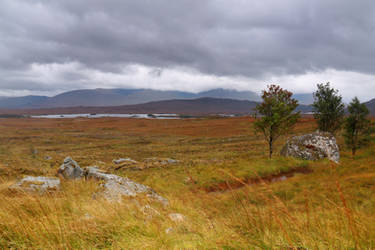 On Rannoch Moor by MaresaSinclair