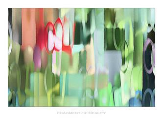Fragment of Reality by BirdseyeStock