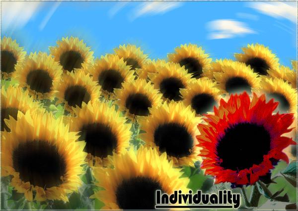 Sunflower Postcard by Wereducky